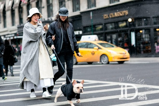 IDSETTERS-IN-THE-STREETS-7